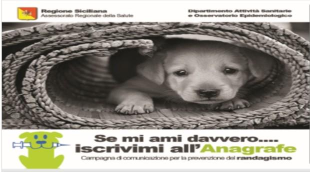 campagna prevenzione